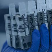 Immunologia Allergologia